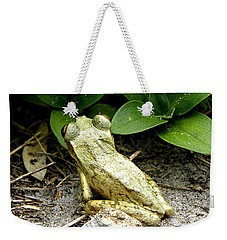 Weekender Tote Bag featuring the photograph Cuban Tree Frog 002  by Chris Mercer