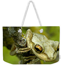 Cuban Tree Frog  Weekender Tote Bag