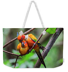 Weekender Tote Bag featuring the photograph Cuddling Parrots by Pradeep Raja Prints