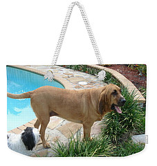 Cujo And Lucky By The Pool Weekender Tote Bag