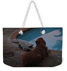 Cujo And The Alligator Weekender Tote Bag by Val Oconnor
