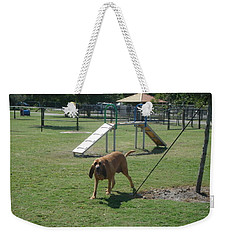 Cujo Running At The Park Weekender Tote Bag by Val Oconnor