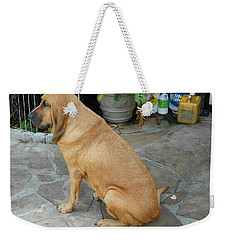 Cujo Sitting Around Weekender Tote Bag