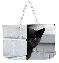 Curiosity Weekender Tote Bag by Robert Meanor