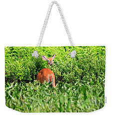 Curious And Undecided Weekender Tote Bag