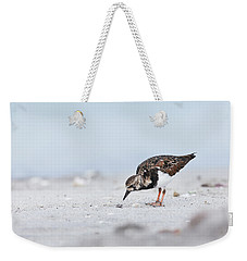Curious Beachcomber Weekender Tote Bag