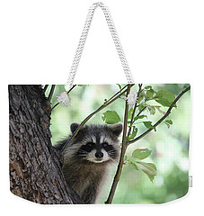 Curious But Cautious Weekender Tote Bag