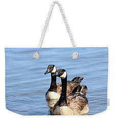 Weekender Tote Bag featuring the photograph Curious Canda Geese by Sheila Brown