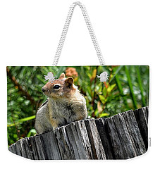 Curious Chipmunk Weekender Tote Bag by AJ Schibig
