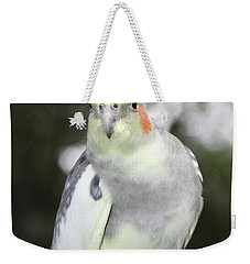 Curious Cockatiel Weekender Tote Bag by Inspirational Photo Creations Audrey Woods