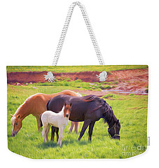Curious Colt And Mares Weekender Tote Bag