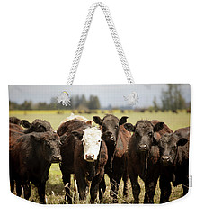 Weekender Tote Bag featuring the photograph Curious Cows by Rebecca Cozart