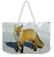 Weekender Tote Bag featuring the photograph Walks Without Sound by Janice Westerberg