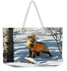 Curious Fox Weekender Tote Bag