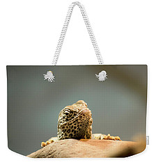 Curious Lizard Weekender Tote Bag