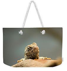 Curious Lizard Weekender Tote Bag by David Stasiak