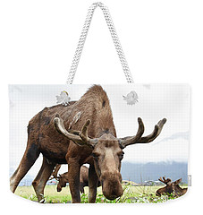 Curious Moose Weekender Tote Bag