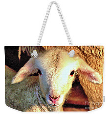 Curious Newborn Lamb Weekender Tote Bag