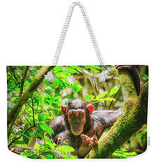 Weekender Tote Bag featuring the photograph Curious by Rick Furmanek