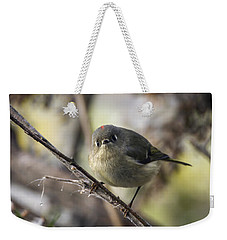 Curious Ruby-crowned Kinglet Weekender Tote Bag