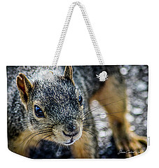 Curious Squirrel Weekender Tote Bag by Joann Copeland-Paul