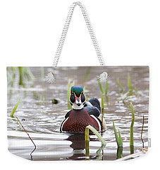 Weekender Tote Bag featuring the photograph Curious Wood Duck by Lynn Hopwood