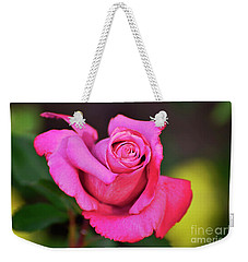 Weekender Tote Bag featuring the photograph Curled Beauty by Debby Pueschel