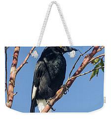 Currawong Weekender Tote Bag by Werner Padarin