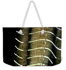 Weekender Tote Bag featuring the photograph Curvilinear by Todd Blanchard