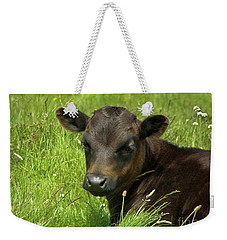 Cute Cow Weekender Tote Bag