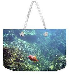 Cute Fellow Weekender Tote Bag by Karen Nicholson