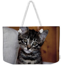 Weekender Tote Bag featuring the photograph Cute by Laura Melis