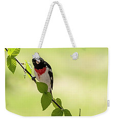 Cute Rose-breasted Grosbeak Weekender Tote Bag