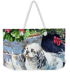 Cute Shih Tzu Dog Under Geranium  Weekender Tote Bag