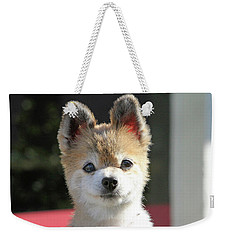 Cute Stare Down Weekender Tote Bag