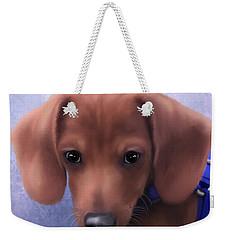 Cuteness Overload Weekender Tote Bag