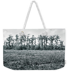 Cypress Oasis Weekender Tote Bag by Andy Crawford