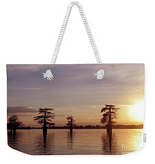 Cypress Sunset Weekender Tote Bag by Sheila Ping