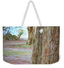 Weekender Tote Bag featuring the photograph Cypress Trees II by Beth Vincent