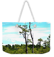 Cypress Trees Weekender Tote Bag by Tara Potts