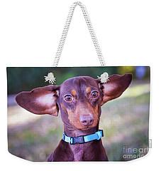 Dachshund Ears Up Weekender Tote Bag by Stephanie Hayes