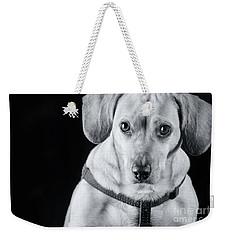 Dachshund Lab Mix Weekender Tote Bag by Stephanie Hayes