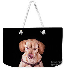 Dachshund Mix Licking Lips Weekender Tote Bag by Stephanie Hayes