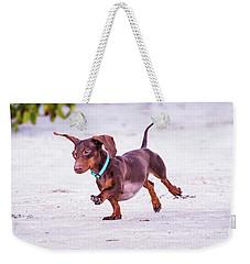 Dachshund On Beach Weekender Tote Bag by Stephanie Hayes