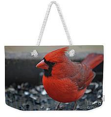 Daddy Cardinal  Weekender Tote Bag by Skip Willits