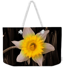 Weekender Tote Bag featuring the photograph Daffodil by Lisa Wooten