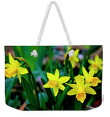 Daffodils A Symbol Of Spring Weekender Tote Bag
