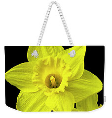 Weekender Tote Bag featuring the photograph Daffodils by Christina Rollo