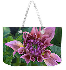 Weekender Tote Bag featuring the photograph Dahlia 'ac Barney' by Ann Jacobson