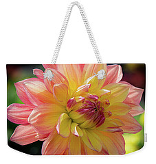 Dahlia In The Sunshine Weekender Tote Bag by Phil Abrams